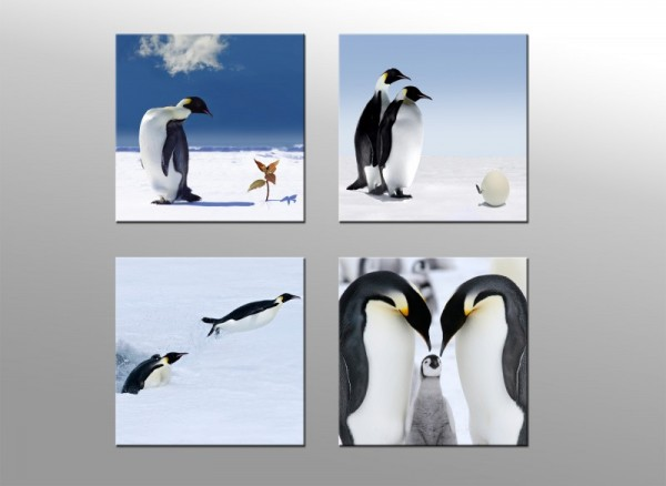 Leinwandbild Set 4 teilig Pinguin