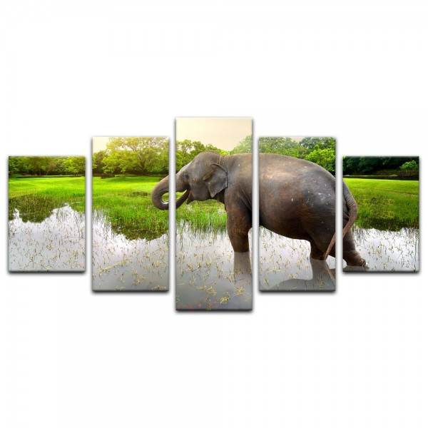 Leinwandbild - Elefant im Wasser - Thailand