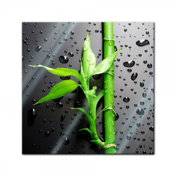 Glasbild - Frischer Bambus II