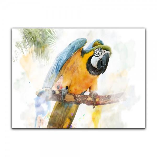 Leinwandbild - Aquarell - Papagei