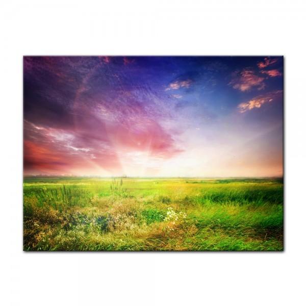 Leinwandbild - Grünes Feld