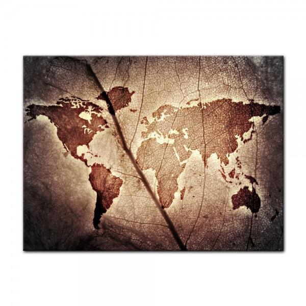 Leinwandbild - Weltkarte Blatt