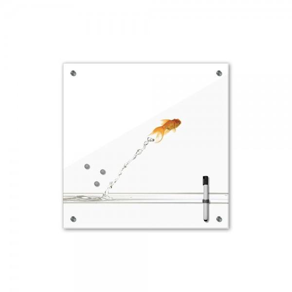 Memoboard - Tiere - springender Goldfisch - 40x40 cm