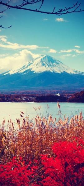 Türtapete selbstklebend Fuji im Herbst Vintage 90 x 200 cm Berg Japan China Asien Vulkan Natur Land