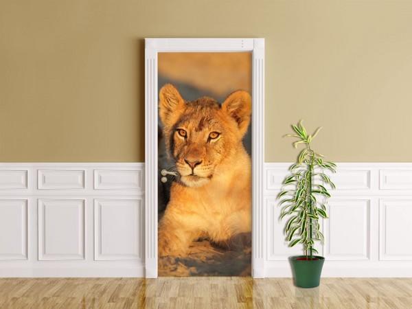Türaufkleber - Afrikanisches Löwenbaby