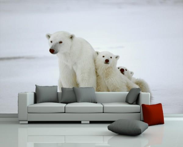 Fototapete Eisbären Familie