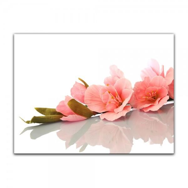 Leinwandbild - Gladiole