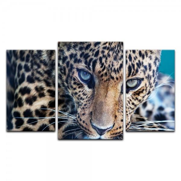 Leinwandbild - Leopard - Portrait