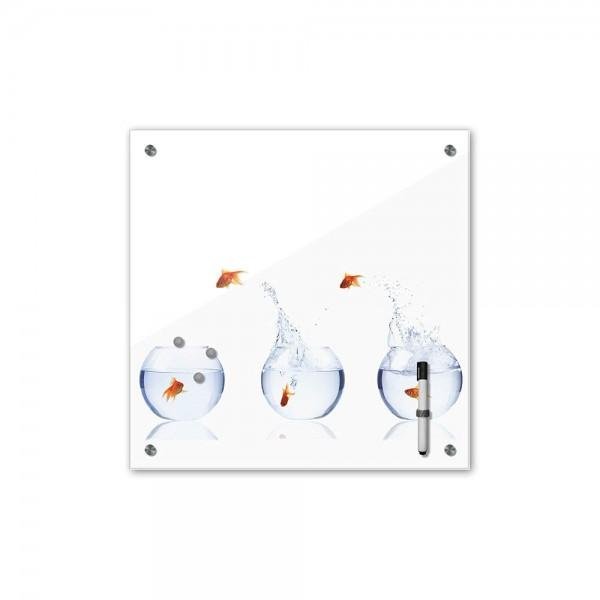 Memoboard - Tiere - Fischolympiade - 40x40 cm
