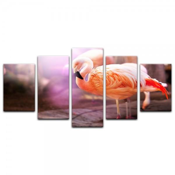 Leinwandbild - Flamingo Retrolook
