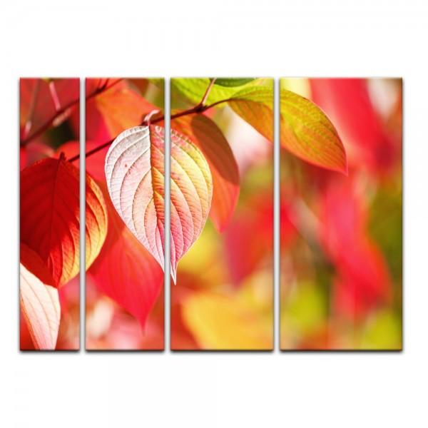 Leinwandbild - Herbstblätter