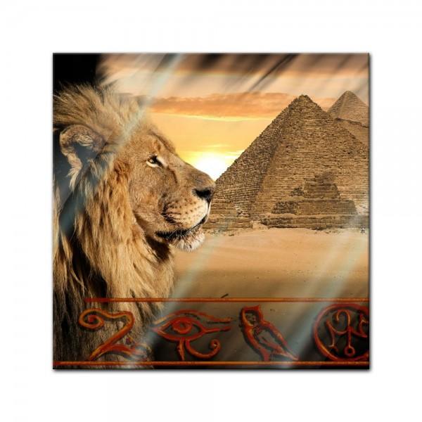 Glasbild - Löwe Pyramiden