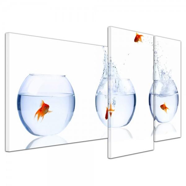 SALE Leinwandbild - Fischolympiade - 130x80 cm 3tlg