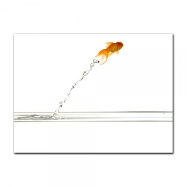 Leinwandbild - Springender Goldfisch