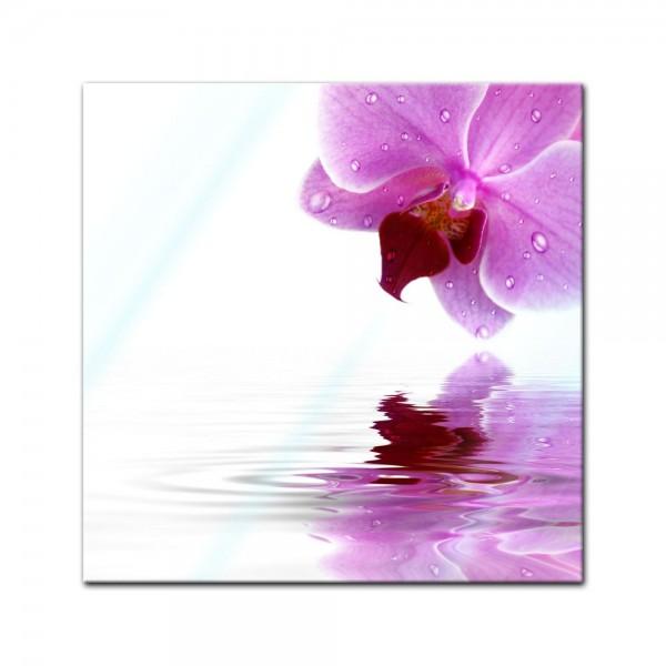 Glasbild - Orchideenblüte