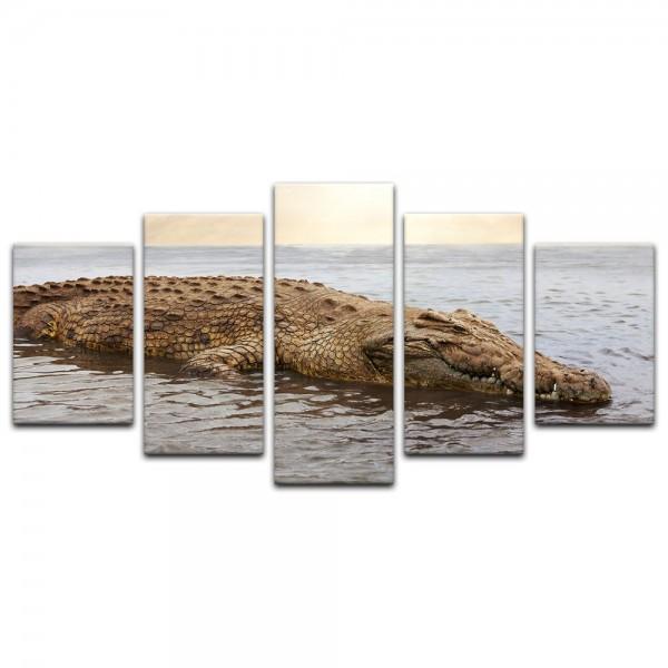 Leinwandbild - Krokodil im Wasser