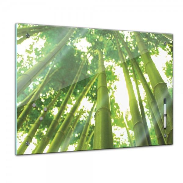 Memoboard - Pflanzen & Blumen - Bambus mit Sonnenstrahlen