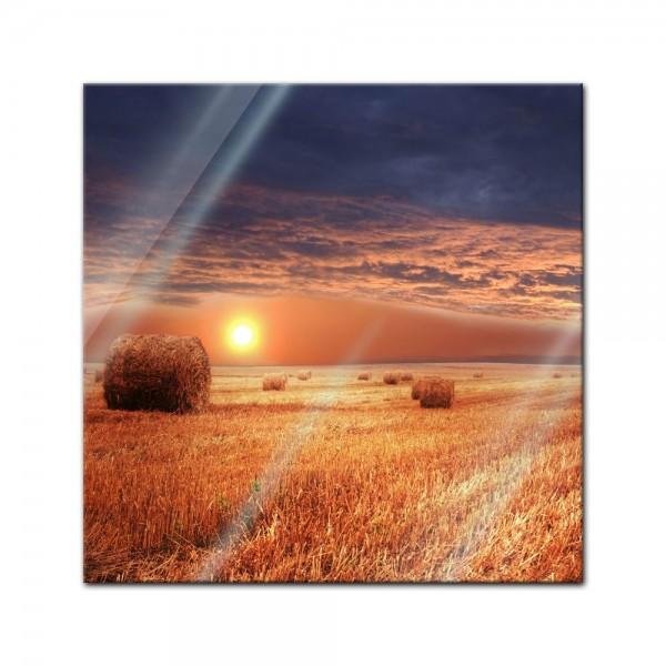 Glasbild - Kornfeld - Stroh