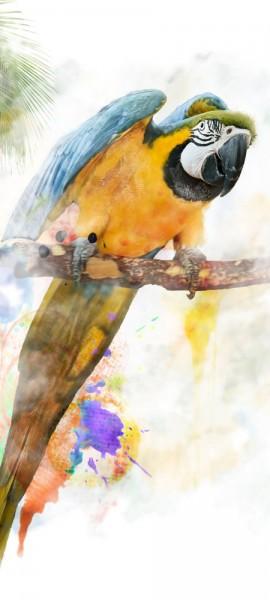 Türtapete selbstklebend Aquarell Papagei 90 x 200 cm