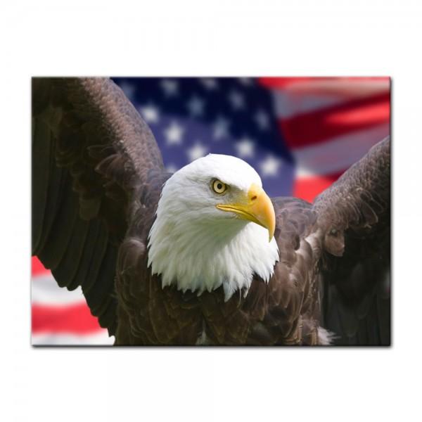 Leinwandbild - American Eagle mit Flagge