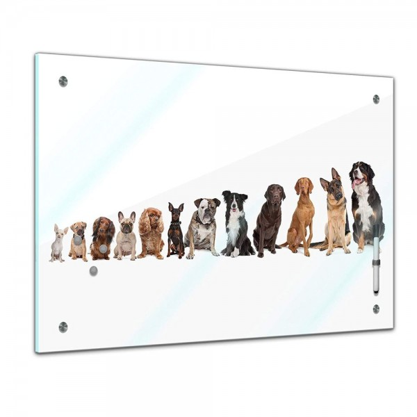 Memoboard - Tiere - große Hundebande