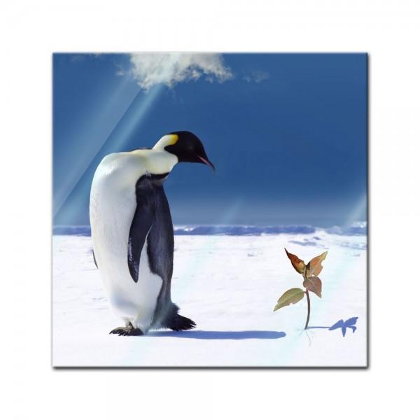 Glasbild - Pinguin mit Blume