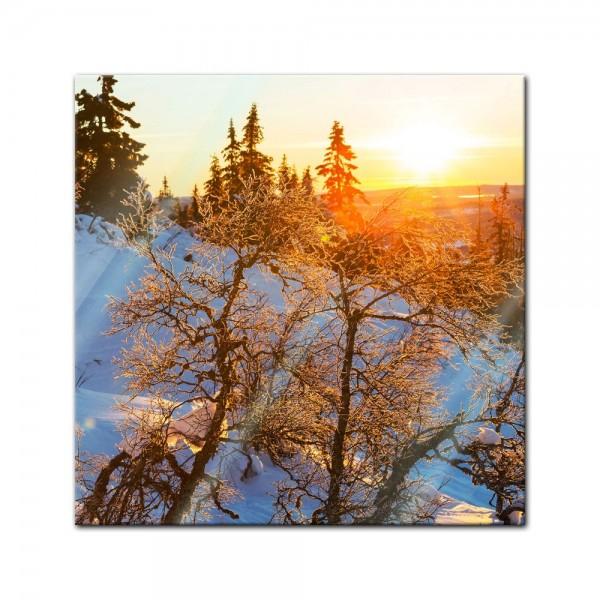 Glasbild - Gefrorene Bäume