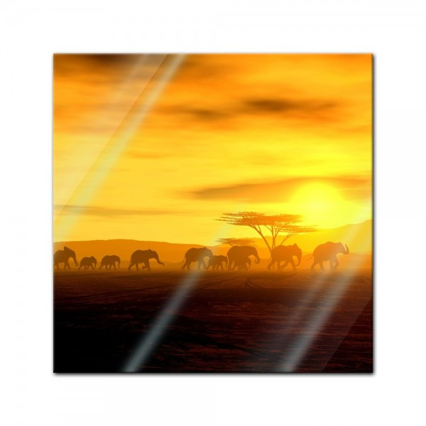 Glasbild - African Spirit - Die Wanderung der Elefanten