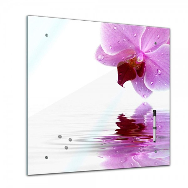 Memoboard - Pflanzen & Blumen - Orchidee - 40x40 cm