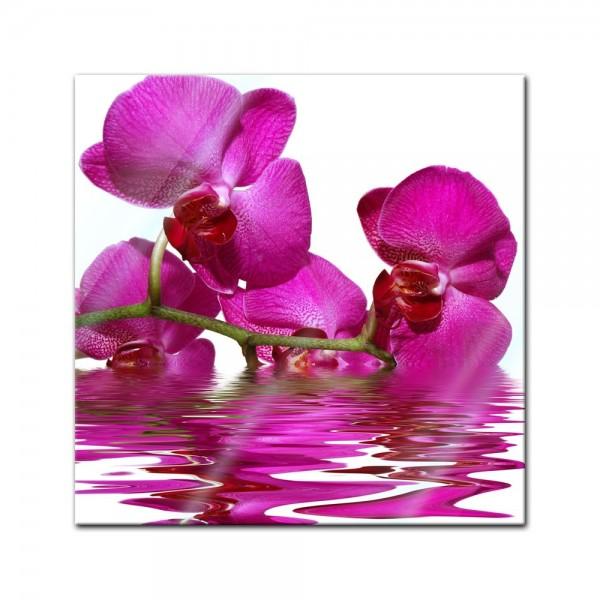 Glasbild - Orchidee II