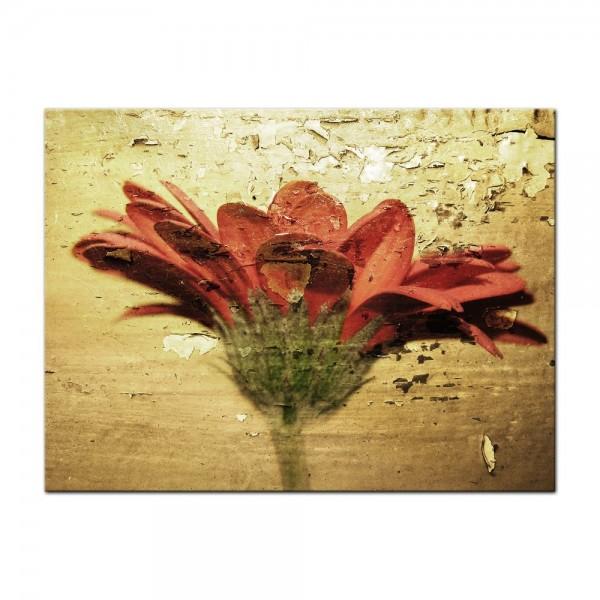 Leinwandbild - Grunge Blume