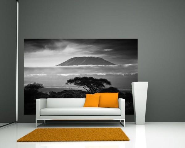SALE Fototapete Kilimandscharo mit Savanne in Kenia - 150 cm x 100 cm - schwarz/weiß