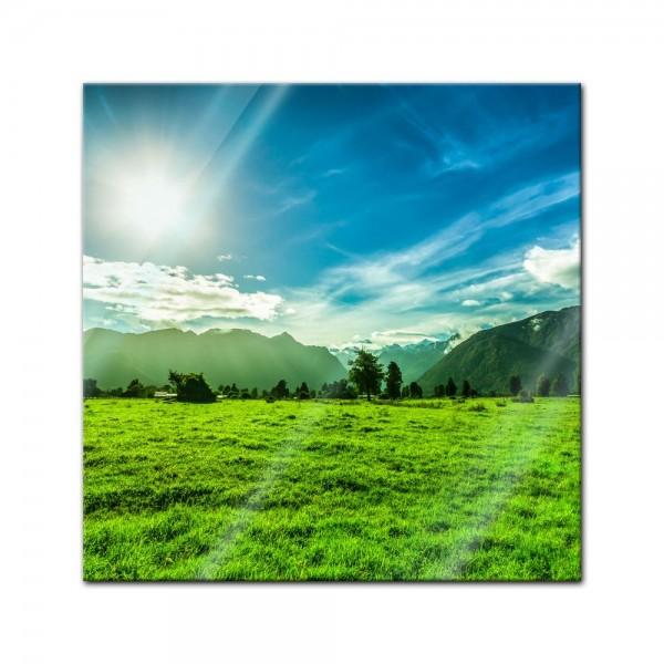 Glasbild - Grüne Landschaft in Neuseeland