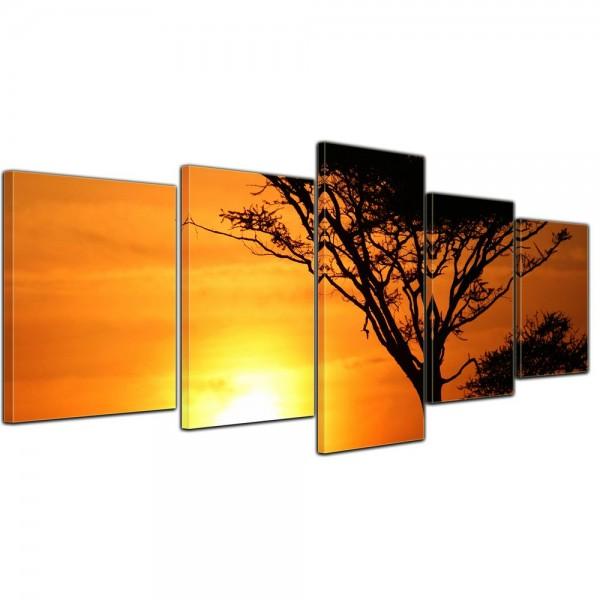 SALE Leinwandbild - Akazienbaum im Sonnenuntergang, Tanzania Serengeti Afrika - 200x80 cm 5tlg