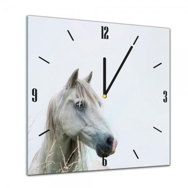 Glasuhr - Tiere - Weißes Pferd, Schimmel - 40x40cm