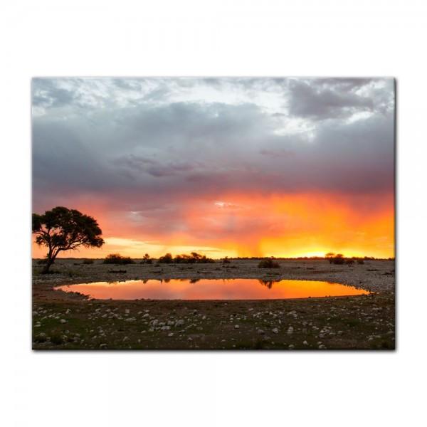 Leinwandbild - Malerische Buschlandschaft im Sonnenuntergang