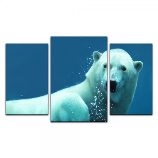 Leinwandbild - Eisbär unter Wasser