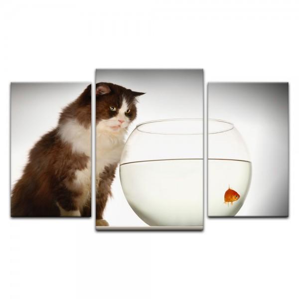 Leinwandbild - Katze am Goldfischglas