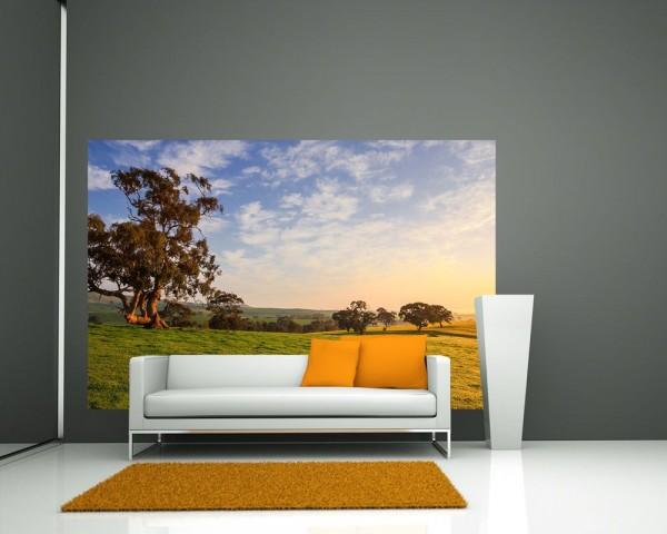 Fototapete - Clare Field - Australien