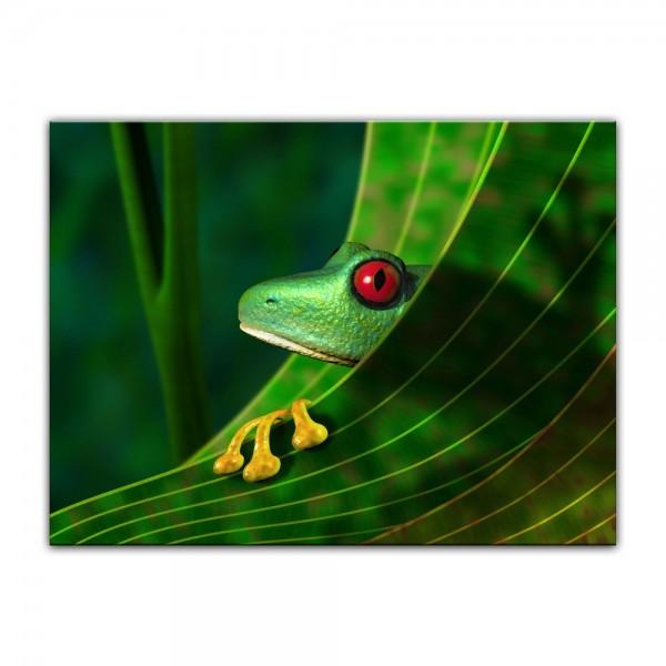 Leinwandbild - Frosch