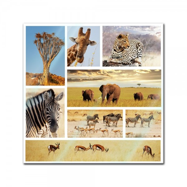Glasbild - Safari Afrika