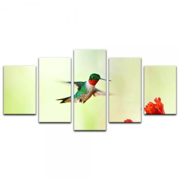 Leinwandbild - Kolibri mit Blume
