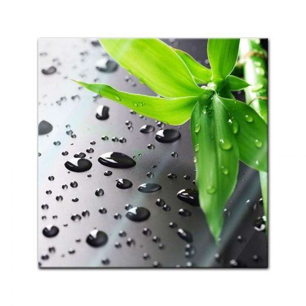 Glasbild - Frischer Bambus