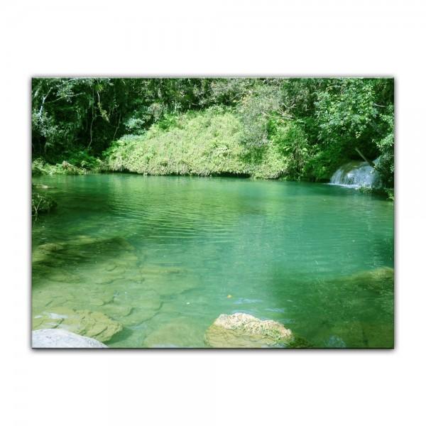 Leinwandbild - See im Dschungel
