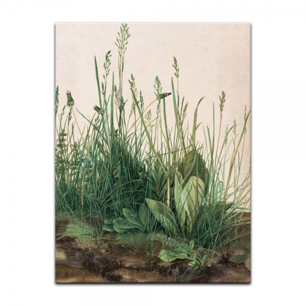 Leinwandbild - Albrecht Dürer - Das große Rasenstück