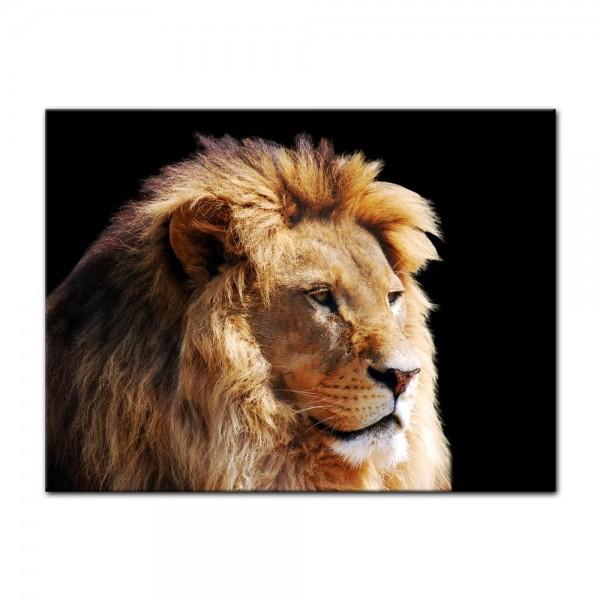 Leinwandbild - Löwenkopf