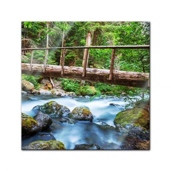 Glasbild - Waldfluss