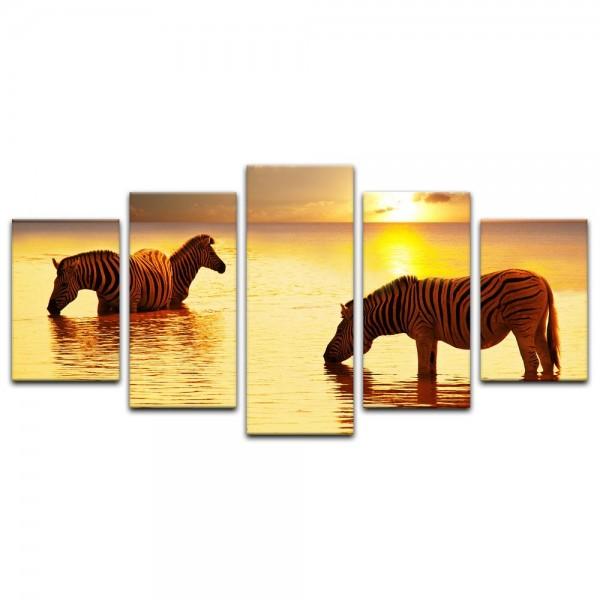 Leinwandbild - Zebras im Wasser