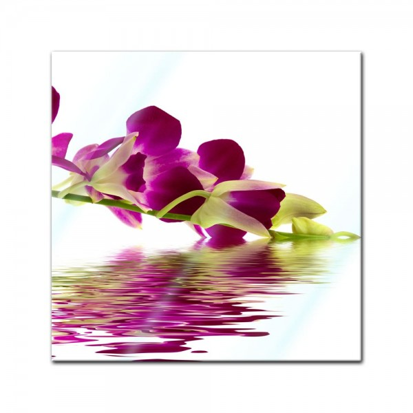 Glasbild - Orchidee IV