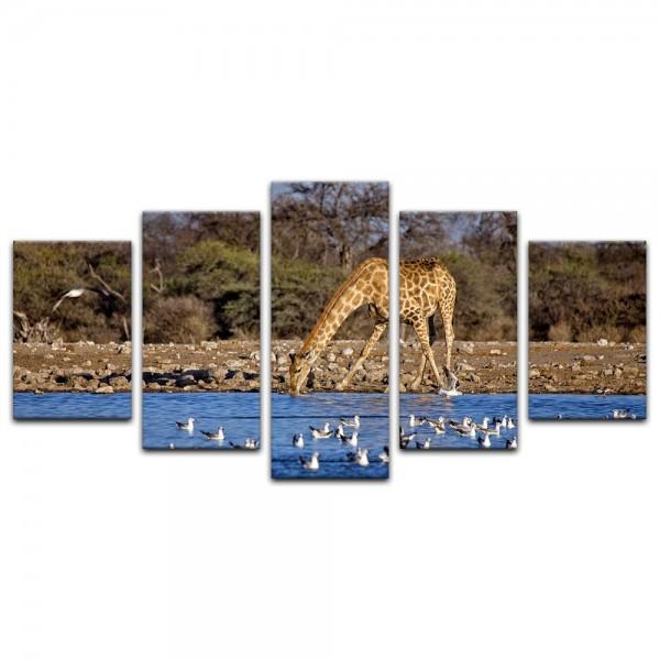 Leinwandbild - Giraffe im Etosha National Park - Namibia